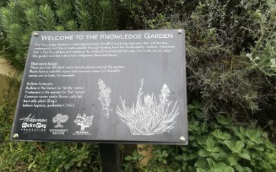 Knowledge garden inspires outdoor learning